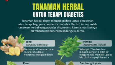 Photo of Tanaman herbal untuk terapi diabetes